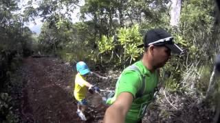Trail des Cagous