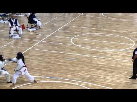 Nikkei Games 2014