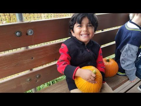 Pumpkin Patch | Farm Animals | Family Fun Trip | Bowers School Farm Michigan