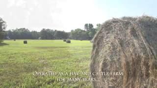Smith Farm 121 Acres: Cumberland County, North Carolina