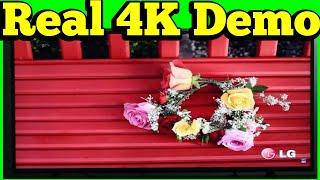 Real 4K Demo of LG 55