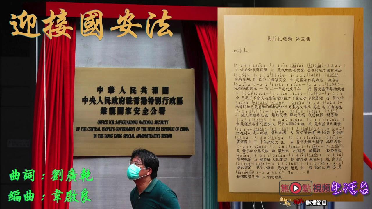 迎接國安法《紫荊花運動》︱劉廣乾老師作品