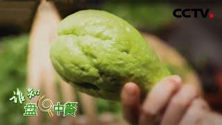 《谁知盘中餐》 20201211 揭秘佛手瓜的真面目|CCTV农业 - YouTube