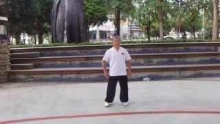 楊式太極拳37式