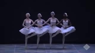Danza de los pequeños cisnes