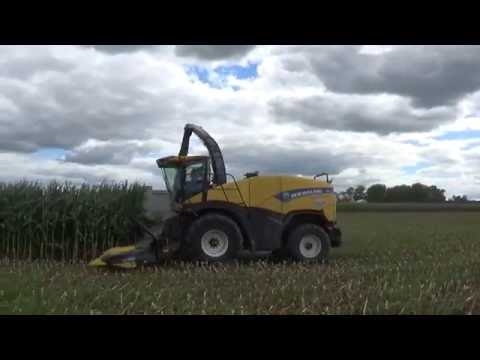 Chopping Corn Silage near Winchester Indiana at Union Go Dairy
