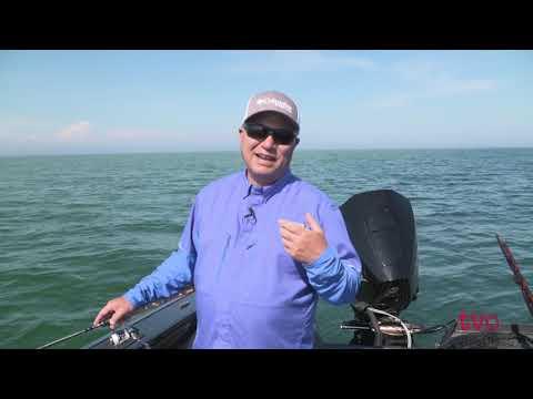 Quarantine And Answer With Bob Izumi