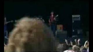 kings of leon red morning light t in the park 2003