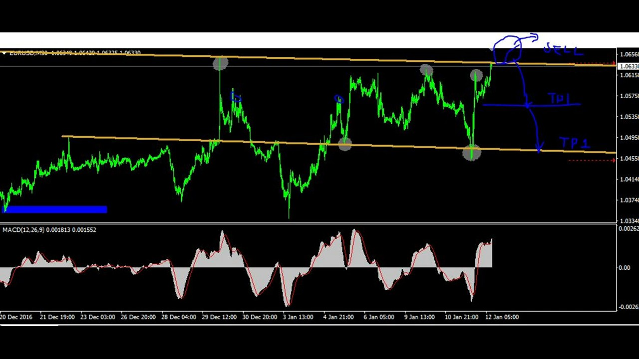 Daily forex forecast video