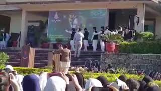 Pashto Attan In PGC bhara kahu | Iqbal day 100k+ Views/ Basit Turi