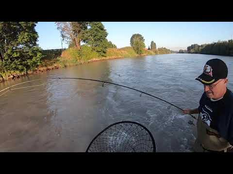 Puyallup River Salmon Fishing