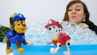 Guardería Infantil - Patrulla de cachorros en la piscina.
