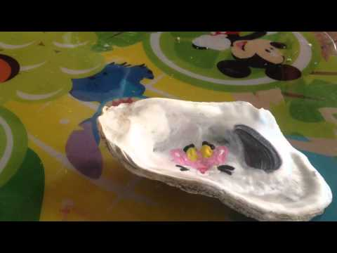 How to make a painted oyster shell