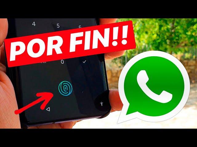 NUEVA ACTUALIZACION de WhatsApp y... SORPRESA