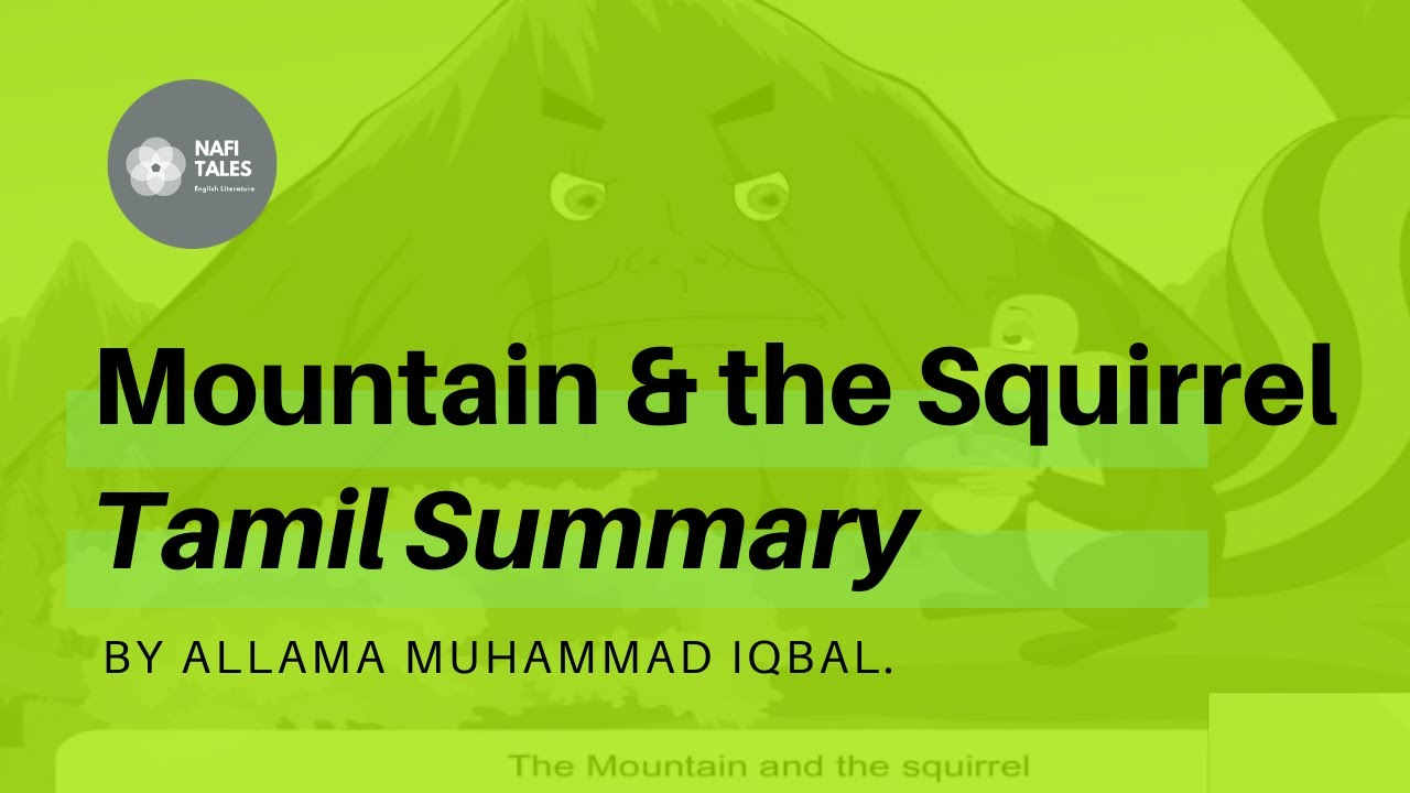 Mountain And The Squirrel Poem Tamil Summary Youtube Paraphrase