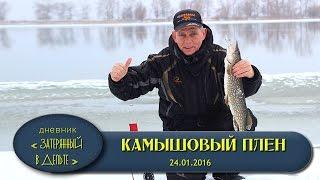 Рыбалка в Астрахани. Дельта Волги, зимняя жерлица..