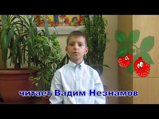 Изображение предпросмотра прочтения – ВадимНезнамов читает произведение «Здравствуй,лето!» Т.В.Боковой