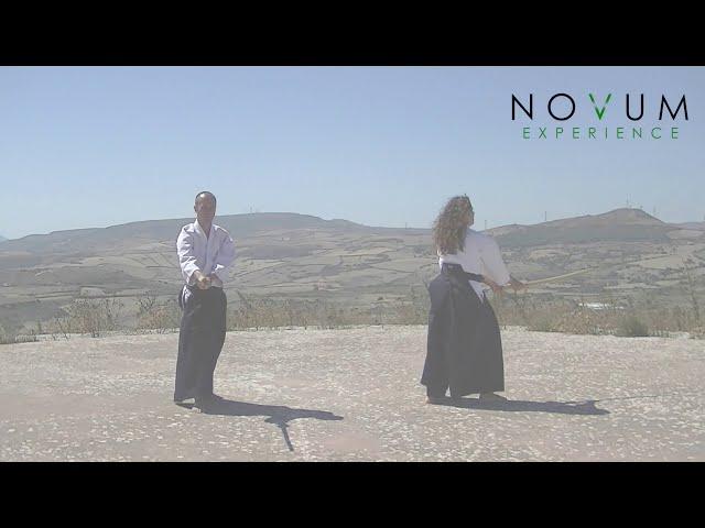 01 Ichi no suburi - Aikido Novum Experience - Ken suburi nanahon -合気道-  一の素振り- 剣素振り七本