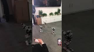 Dancing robots at Huikedu