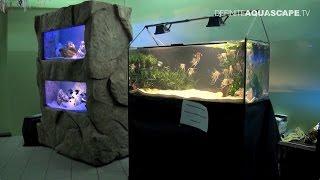 Little Big World of Aquarium - Bigger aquariums (pt.5)
