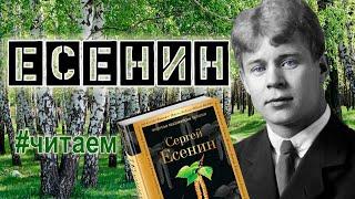 #Читаем Есенина.