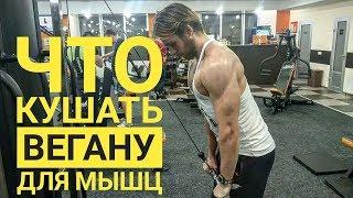 Что кушать вегану для мышц / секреты питания для роста мышц  малоедение