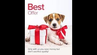 purchase dog food online in\Available Now purchase dog food online