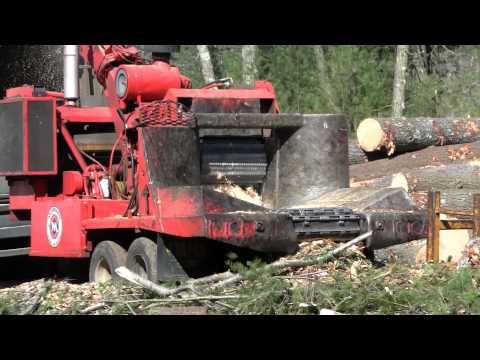 Log Loader loading Chipper