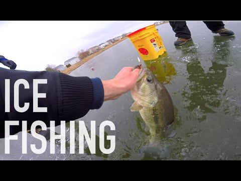 Giant Bass Through Clear Ice -- Ice Fishing