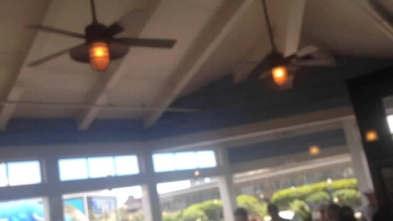 Minka Aire Rainman Ceiling Fans