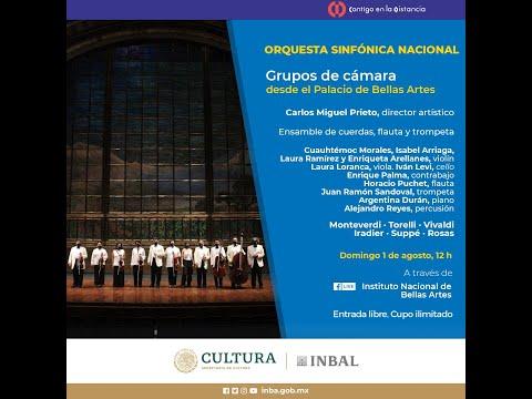 Grupos de cámara desde el Palacio de Bellas Artes / Orquesta Sinfónica Nacional / INBAL / México