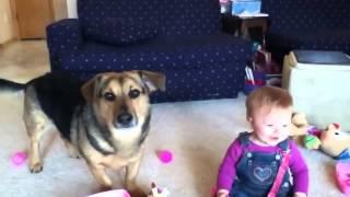 Ребенок смеется над собакой