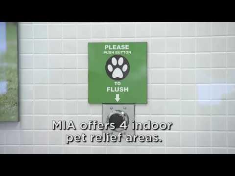 Miami International Airport: Pet Relief Areas