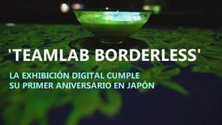 La exhibición Teamlab Borderless cumple su primer aniversario en Japón
