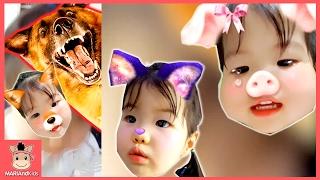 아기돼지 삼형제 동요 율동 부르기 유니 도전 ♡ 귀여운 아기 돼지 노래 인기동요 동물동요 율동동요 | 말이야와아이들 MariAndKids