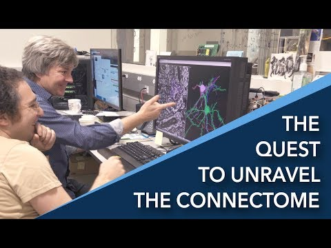 The Quest to Unravel the Connectome