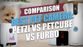 Best Dog Camera: Testing and Comparing