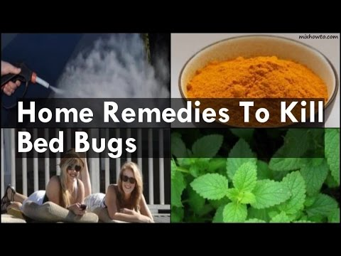 Home Remedies To Kill Bed Bugs Youtube