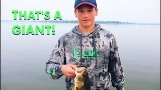 INSANE Bass Fishing in Mid August - Leech Lake