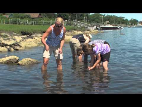 New England Boating: Bristol, RI