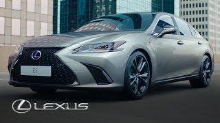 nx-300h-11 Lexus Hybrid