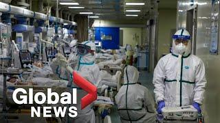 Coronavirus outbreak: Virus named COVID-19; more Canadian evacuees arrive