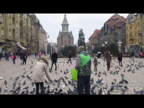 Timișoara, Timis, Romania TRAVEL VIDEO