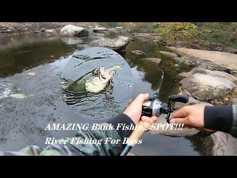 AMAZING Bank Fishing SPOT!!!River Fishing For Largemouth Bass And Striped Bass