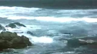 Esselfortium - Andante
