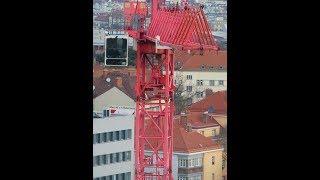 Wolff in Work 360°