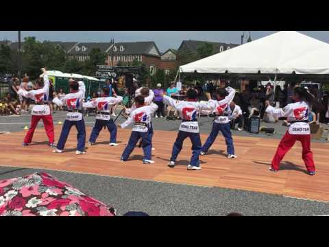 "Perry Hall white Tiger Martial Arts demo at ""A Taste of Honeygo"" festival"