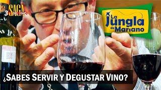 Sabes servir y degustar tu vino Saga del Vino 3
