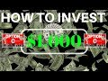 HOW to INVEST $1000 | PORTFOLIO BUILDING for NEW INVESTORS