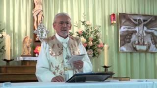 Die göttliche Gebrauchsanweisung – 7. Teil – Fahnenmarsch für eine fremde Fahne